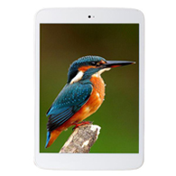 7.85 inch A23 dual core 1024*768 tablet pc for Android 4.4